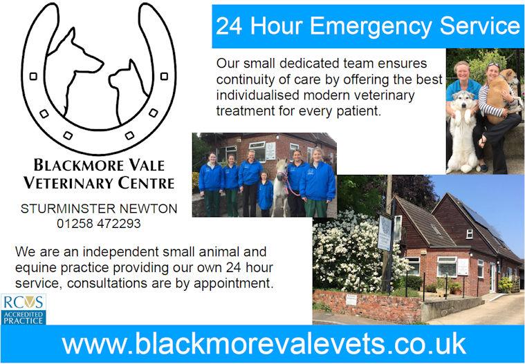 Blackmore Vale Vets